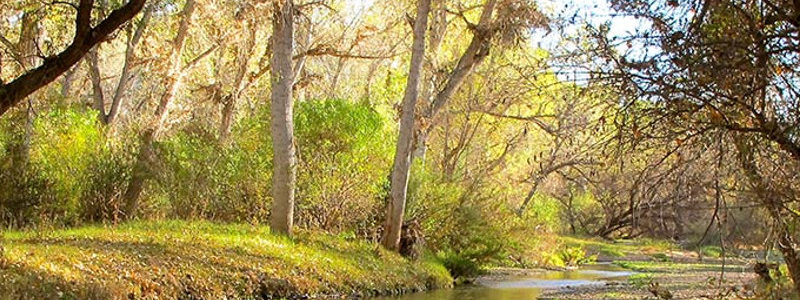 Along The Santa Cruz River – We Live Here! Festival – Nov 9