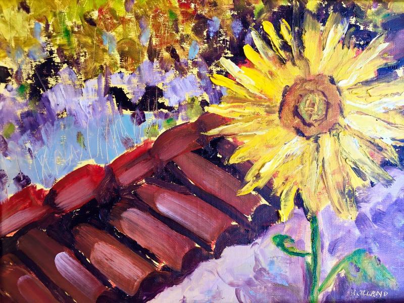 Sunny Adobe by Jan Holland